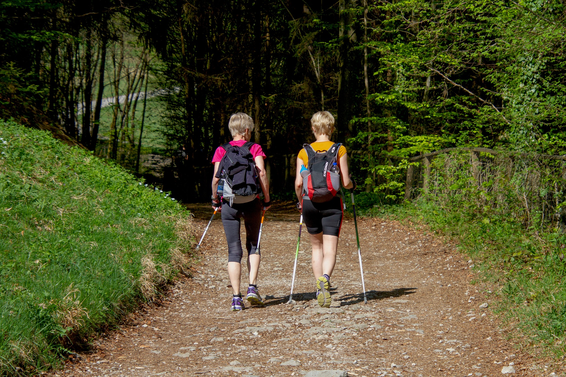 il nordic walking